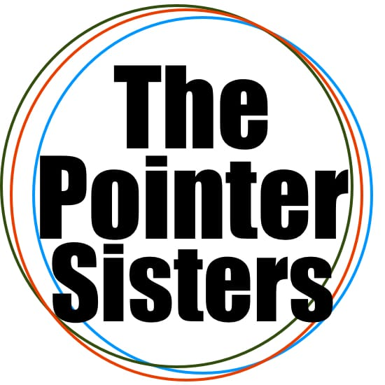 I'm So Excited The Pointer Sisters Backing Track
