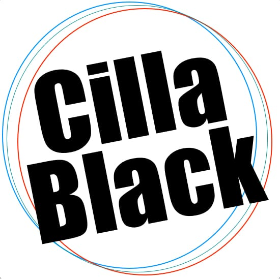 Anyone Who Had A Heart Cilla Black Backing Track