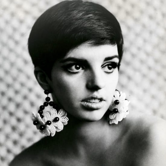 Bye Bye Blackbird Liza Minnelli Backing Track